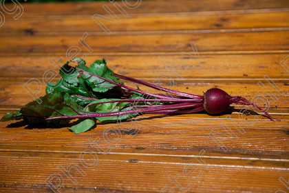IMG 7578 