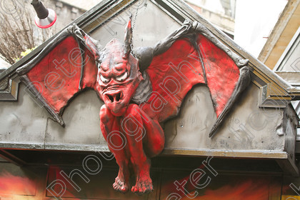 IMG 1229 